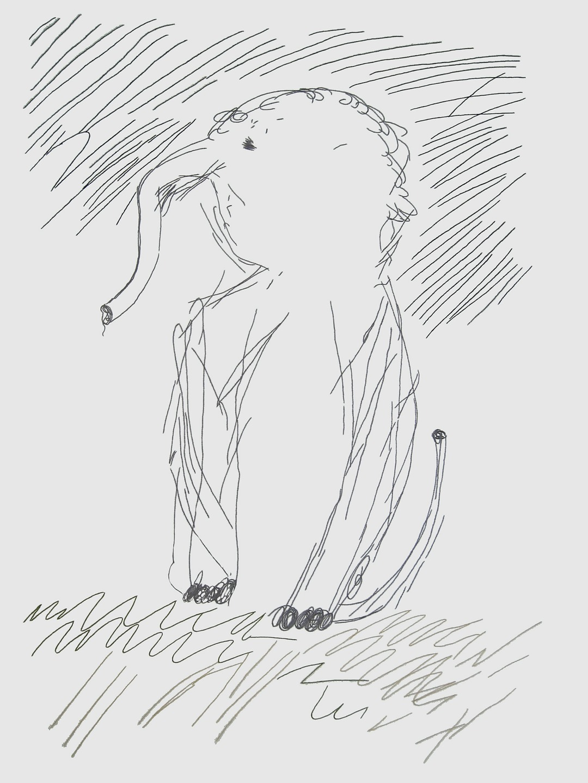 embroidery_garden_elephant