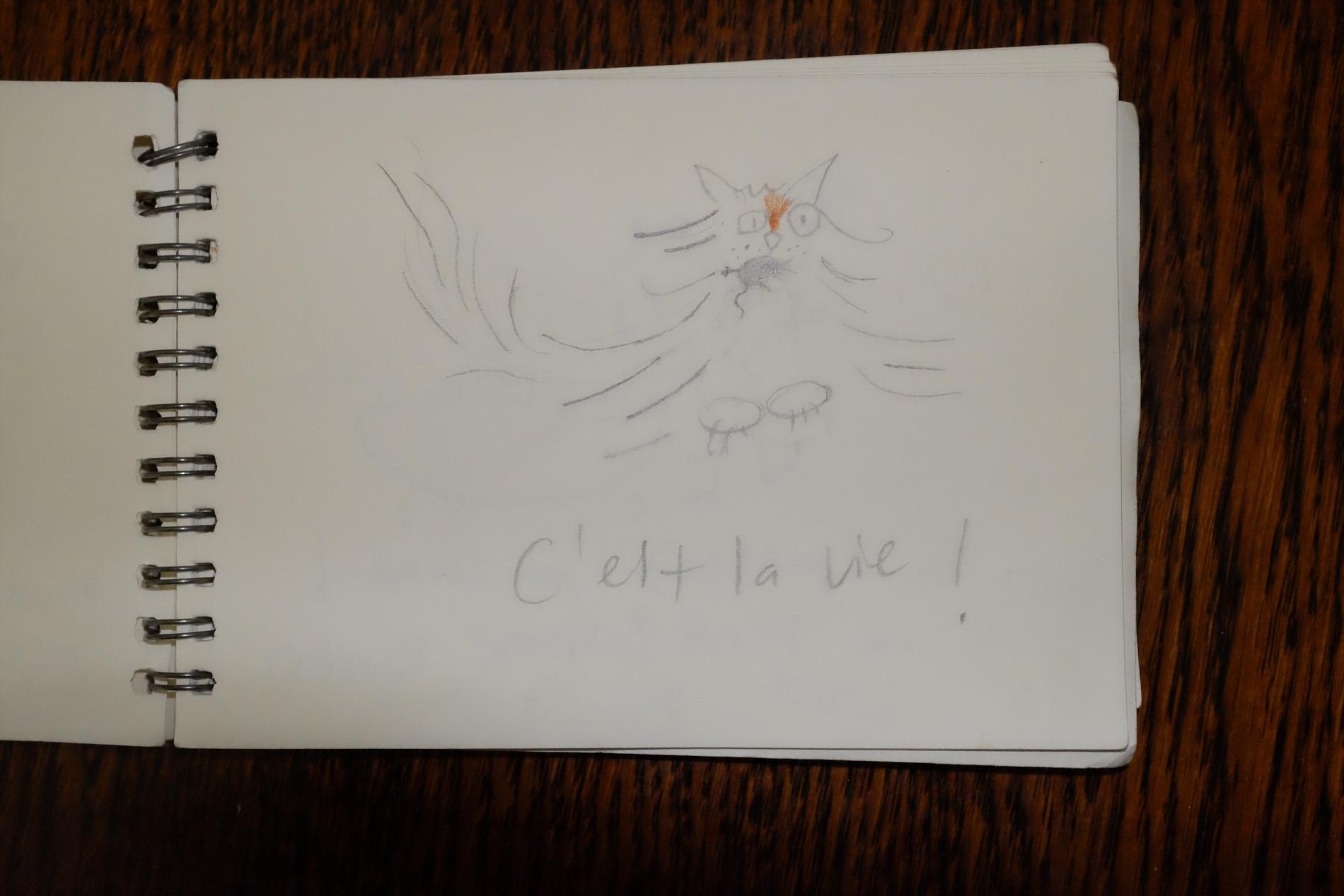 drawings-french diary-c'est la vie!