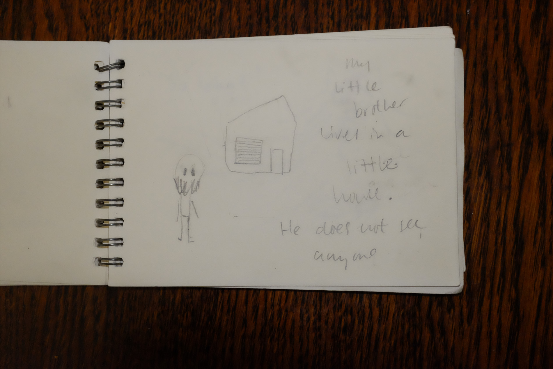 drawings-french diary-my brother lives in a little house